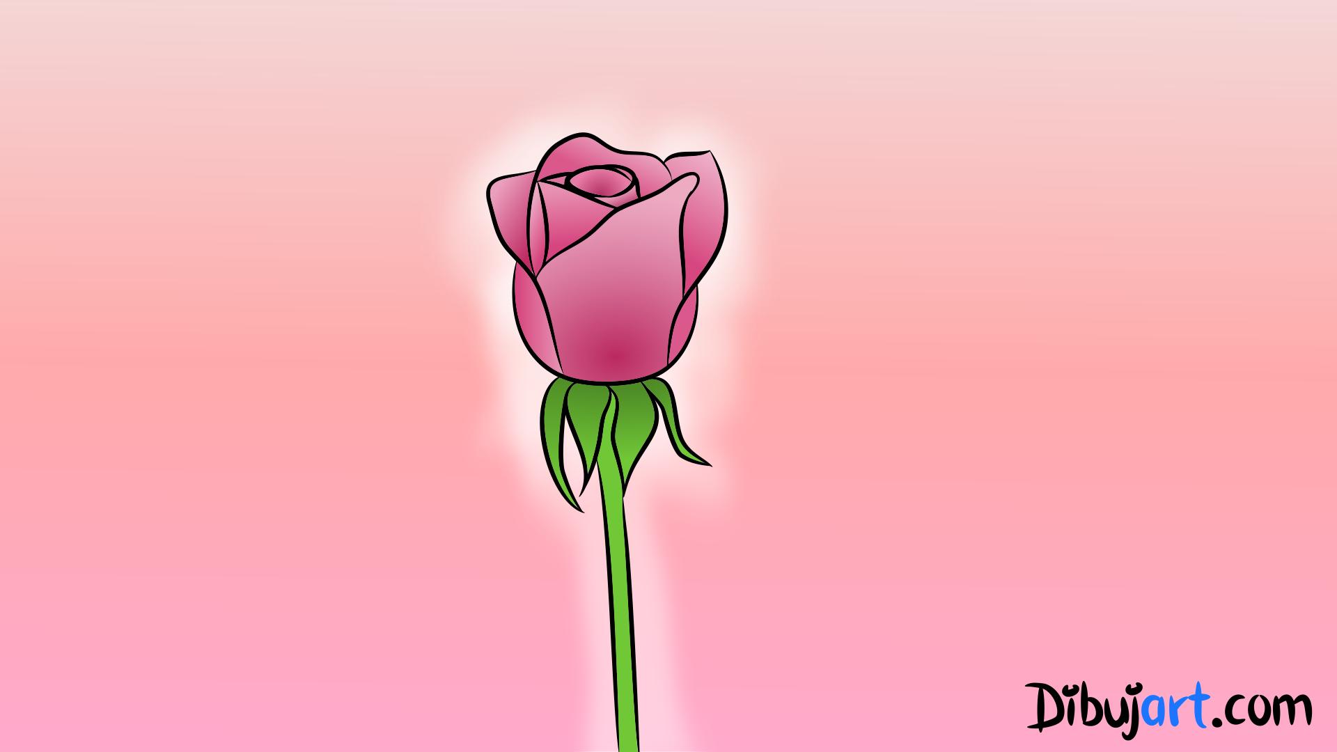 C mo dibujar una rosa 3 dibujos de rosas rosadas - Como secar una rosa ...