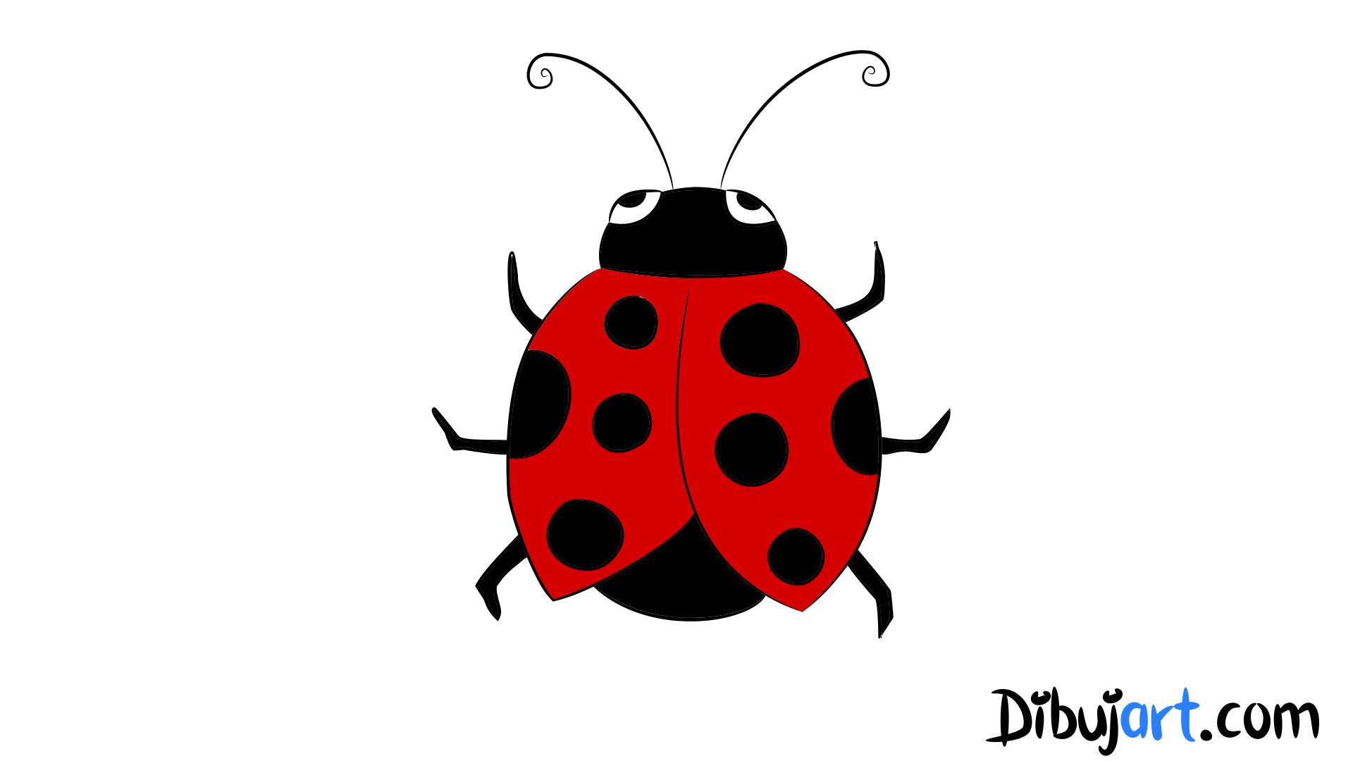 Dibujos De Insectos Para Colorear Para Ninos: Cómo Dibujar Una Mariquita Paso A Paso