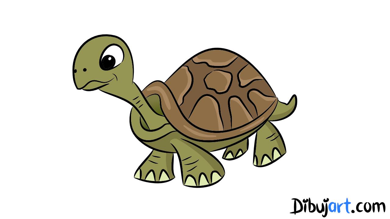 Como dibujar una Tortuga paso a paso | dibujart.com