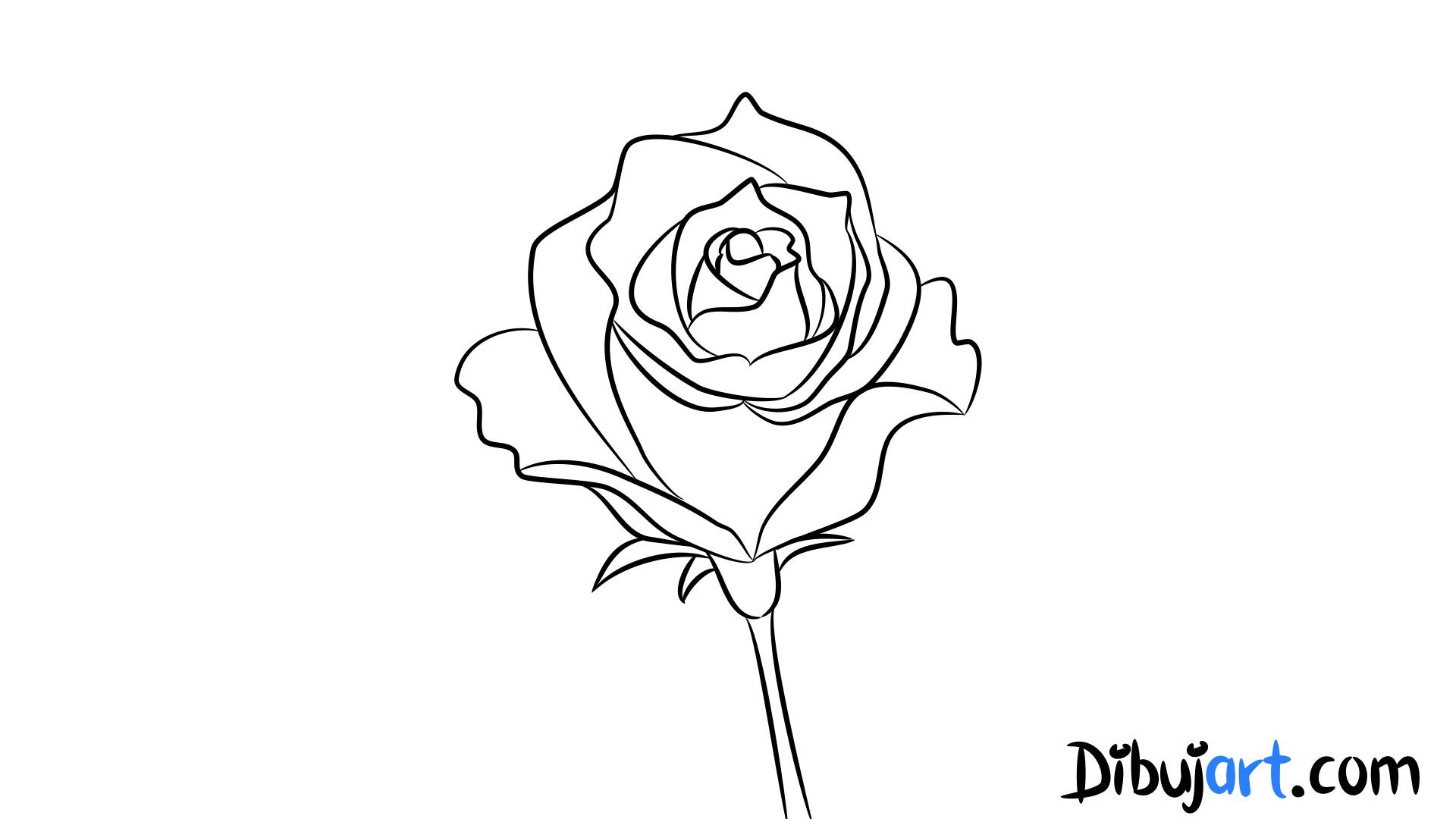 Cómo dibujar una Rosa #1 - Serie de dibujos de Rosas | dibujart.com