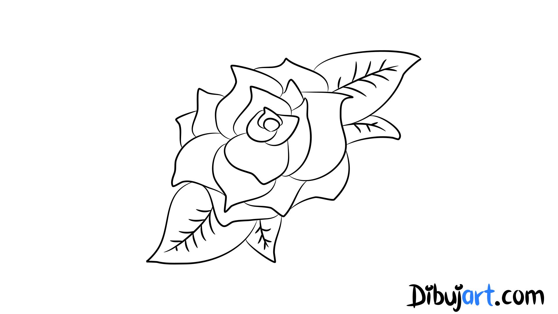 C mo dibujar una rosa 2 una rosa color fucsia - Como secar una rosa ...