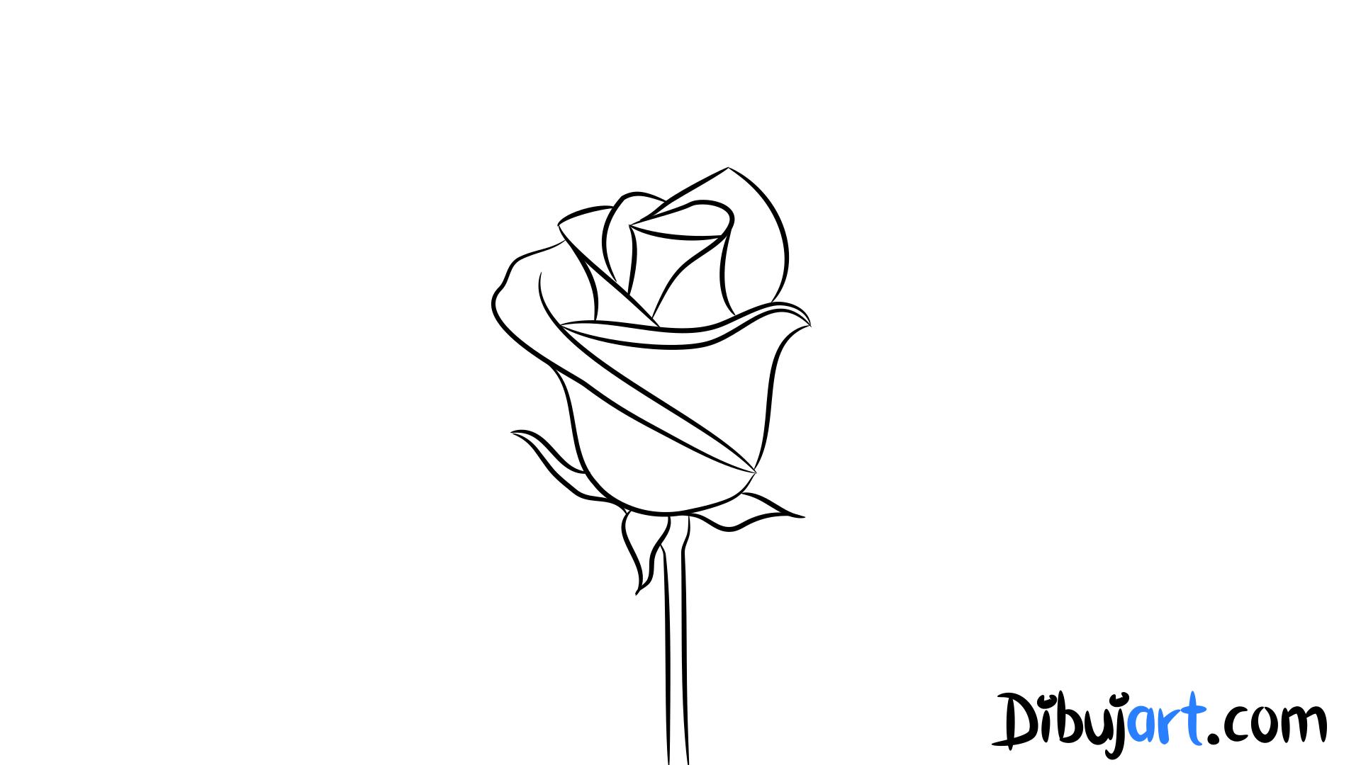 Cómo dibujar una Rosa #4 - dibujos de Rosas color claro | dibujart.com